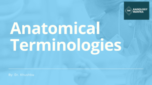 Anatomical terminologies